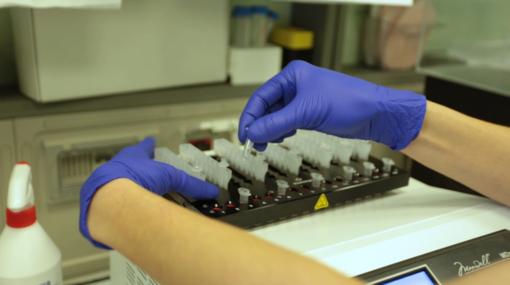 Coronavirus Piemonte: scendono i ricoveri in terapia intensiva e non intensiva