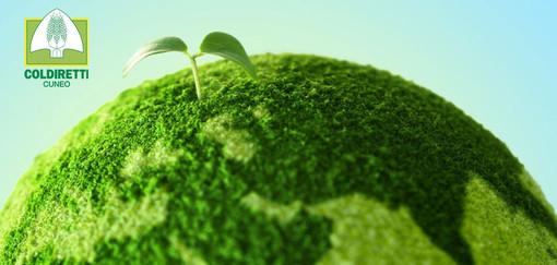 """Backstage, rivedi la puntata: """"PNNR, Green Deal e sostenibilità. il futuro prossimo della nostra agricoltura"""""""