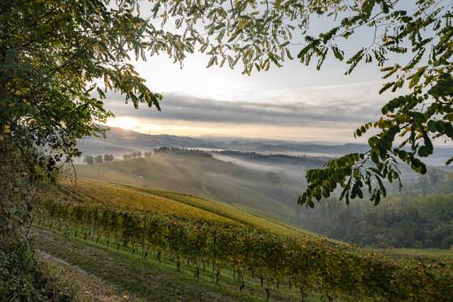 Un paesaggio delle colline Unesco (foto Alessandro Sgarito)