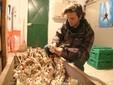 Matteo confeziona una treccia dell'aglio di Caraglio