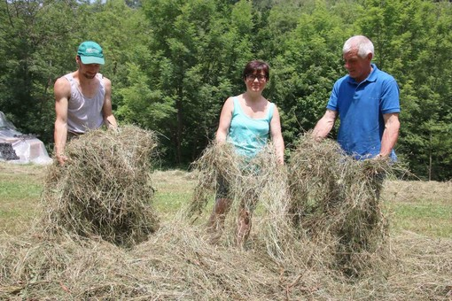Nicolò, Milena e Gino in un campo di fieno dell'azienda