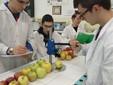 Un altro momento delle verifiche in laboratorio sulle mele