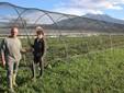 Francesco e Firmina davanti a una serra con lo sfondo della Bisalta