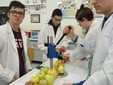 """Allievi del """"Virginio-Donadio"""" impegnati nel lavoro di laboratorio"""