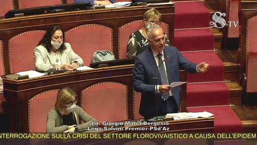 """Florovivaismo, Bergesio (Lega): """"Settore tradito da governo, solo promesse mancate"""""""