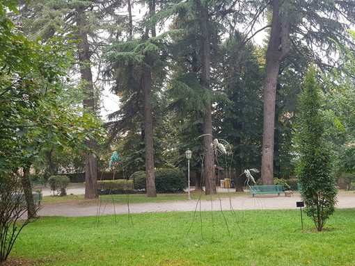 Una bella immagine del parco braidese pubblicata sulla sua pagina Facebook dall'Associazione Amici dei Giardini della Rocca