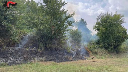 L'incendio boschivo a Trinità