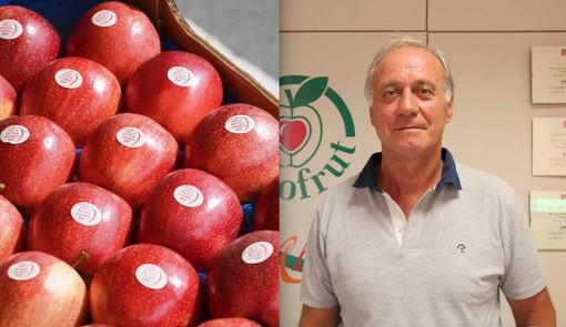 La Mela Rossa Cuneo Igp e il presidente Domenico Sacchetto