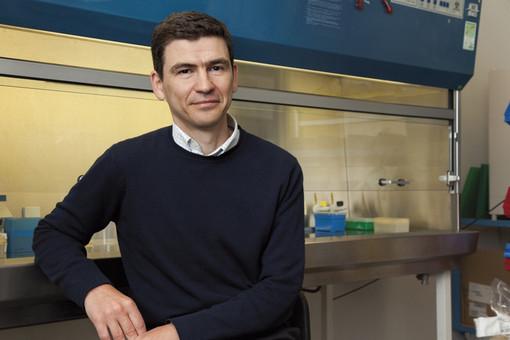 Coronavirus: intervista al Prof. Mihai Netea, dell'Università Radboud (Olanda), uno tra i massimi esperti di immunologia al mondo