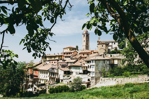 Una veduta di Monforte d'Alba (foto di Barbara Guazzone)
