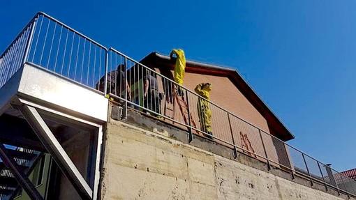 Asportato un nido di calabroni sotto il tetto della scuola primaria di Vezza (FOTO)