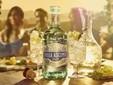 Villa Ascenti, il gin premium lanciato da Diageo nel maggio scorso
