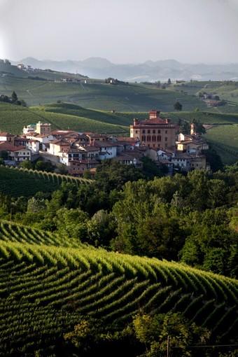 Barolo Città Italiana del Vino 2021: in calendario un anno di proposte