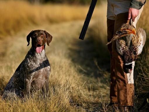 Tre sessioni di esami per gli aspiranti cacciatori in Provincia a marzo, maggio e ottobre