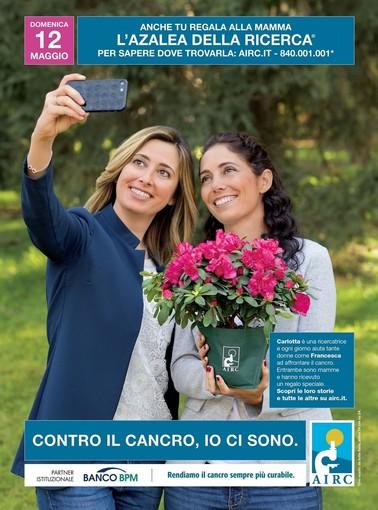 Oggi è la Festa della Mamma:l'Azalea di AIRC  colora 3.700 piazze per rendere i tumori femminili sempre più curabili