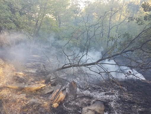 In fiamme un ettaro di bosco nei pressi di Garessio: vigili del fuoco e Aib sul posto