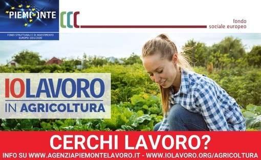Una delle cartoline della campagna per promuovere la domanda e l'offerta del lavoro in agricoltura