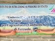 Simone Peyracchia e Marco Audisio