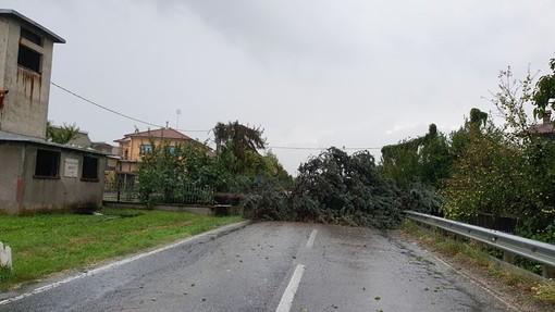 Agosto 2019, 400mila euro di danni da maltempo in Granda: eventi eccezionali, Regione chiede aiuto a Roma