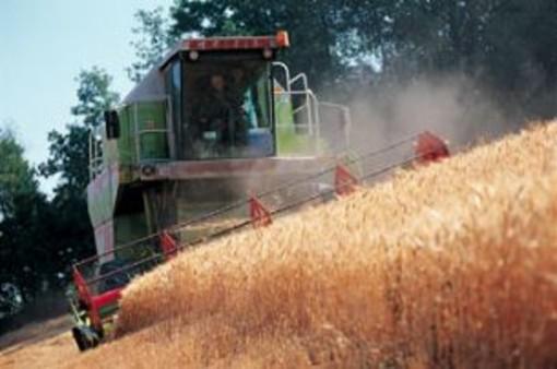 Con la Legge di Bilancio 2020 si riduce l'imposizione fiscale per gli agricoltori